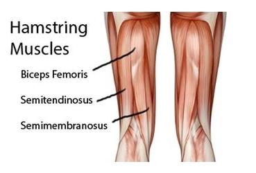 rotura del tendon isquiotibial